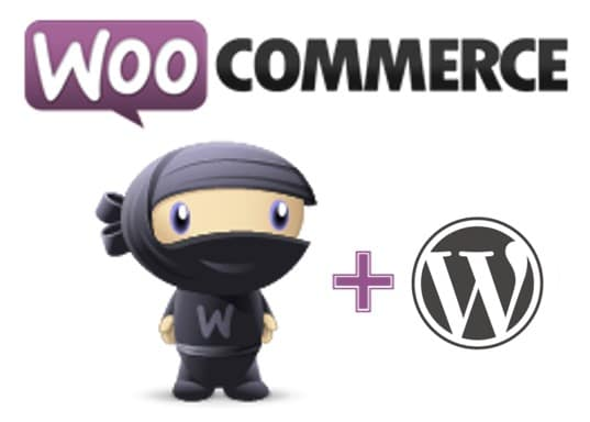 WOOCOMMERCE ecommerce is becoming a big deal for us